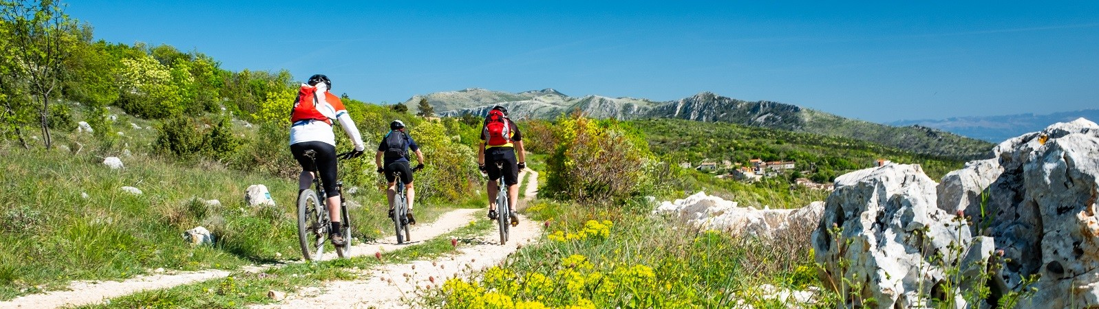 Travel to Croatia and join us in an unforgettable cycling in Istria